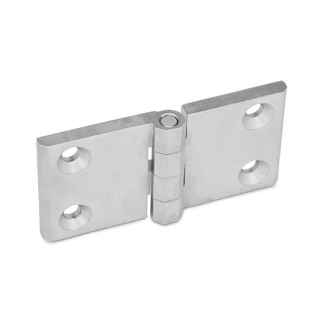 GN 237 Stainless Steel Hinges, with Extended Hinge Wing Finish: GS - Matte, shot-blasted finish