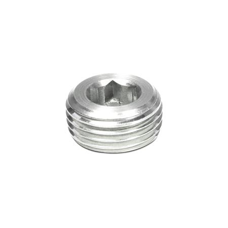 DIN 906 Stainless SteelThreaded Plugs, with Tapered Thread