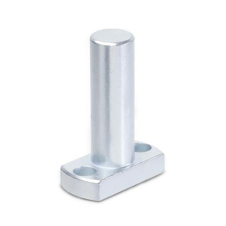 GN 480 Steel, Flanged bolts