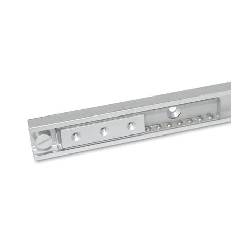GN 2402 Steel, Linear Slides With No Extension